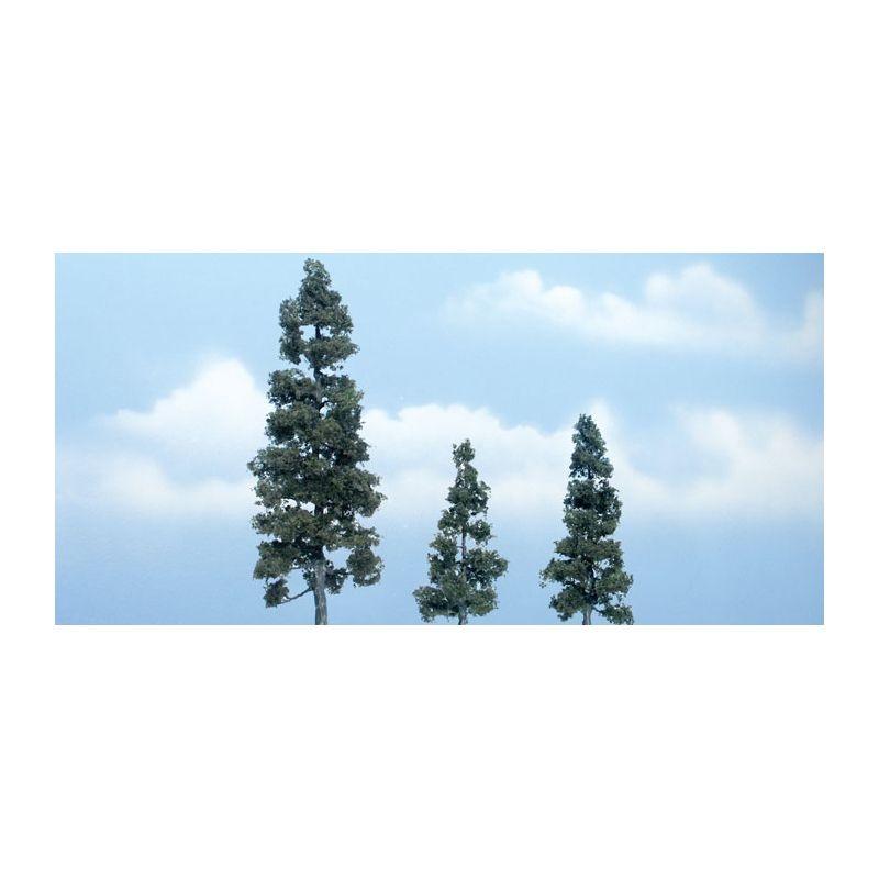 Wacholder, 13 cm; 6,35 cm; 7,62 cm