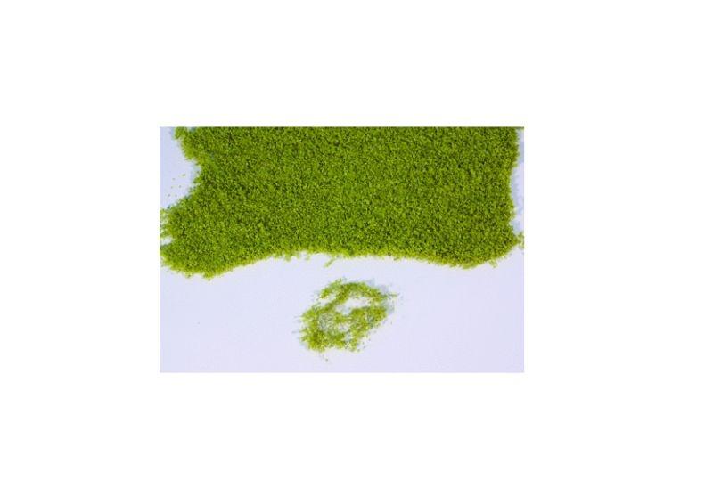 Realistic flor hellgrün, 28 x 14 cm