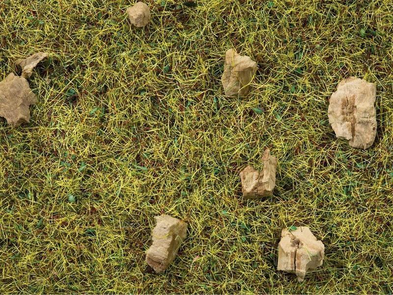 Streugras Steinige Bergwiese, 2,5 mm, 20 g Beutel