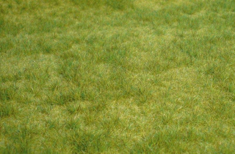 realistic Wildgras Frühlingsgras, 45x17 cm
