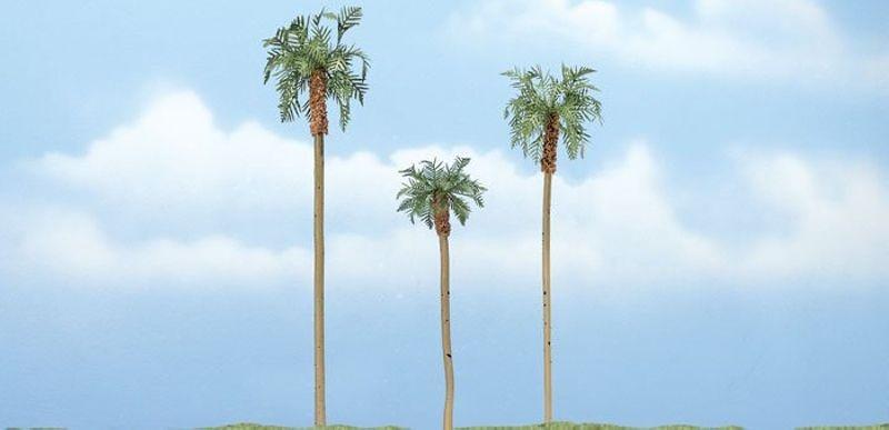 3 Königspalmen, 11,4, 7,6 & 10,1cm, für verschiedene Spuren