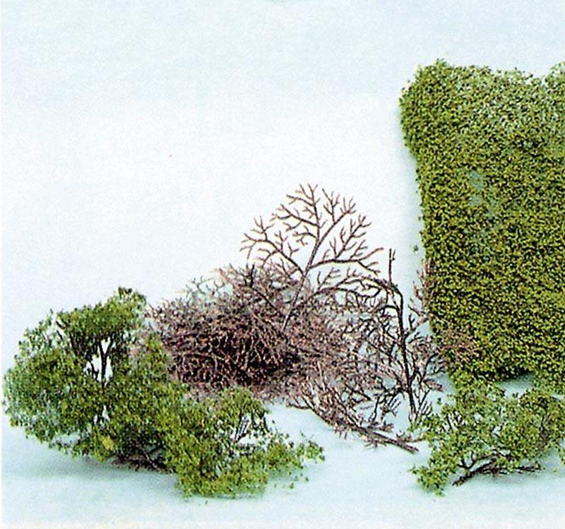 15 Büsche 2-6 cm + HEKI flor