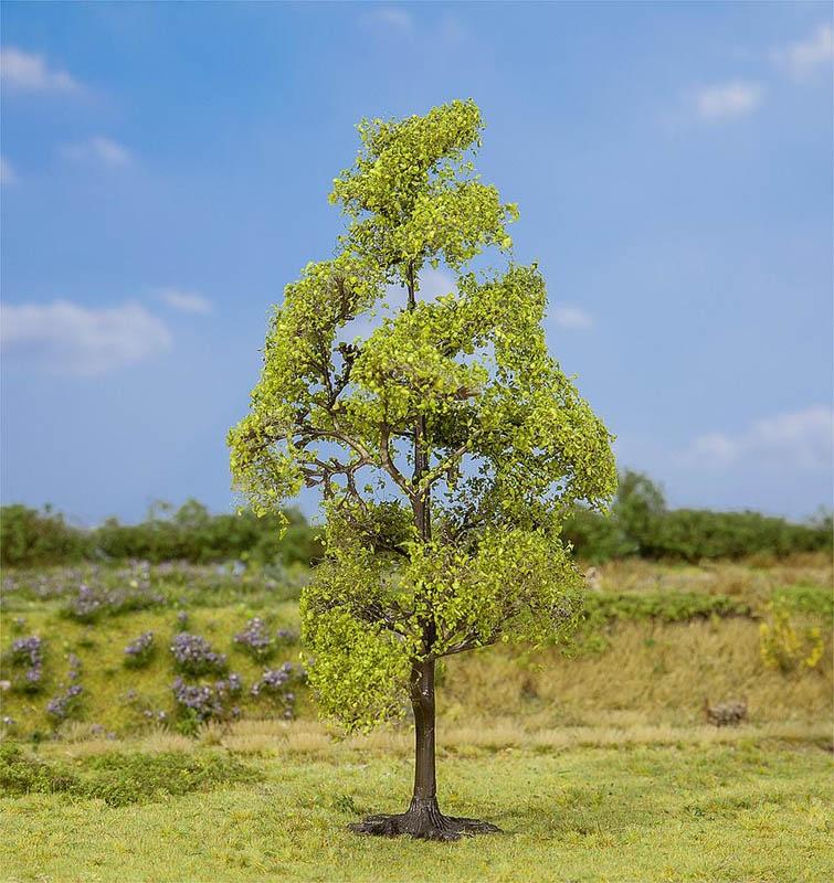 1 PREMIUM Baum Erle H0, TT, N