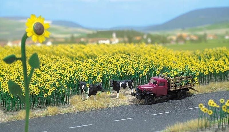 Sonnenblumenfeld, Spur H0