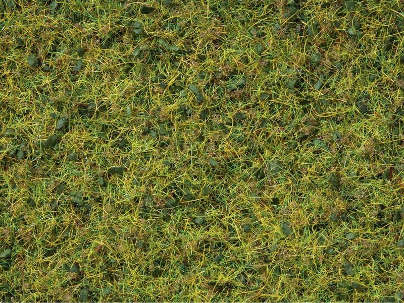 Master-Grasmischung Kuhweide, 2,5 bis 6 mm, 50 g