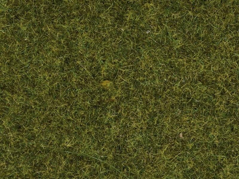 Streugras Wiese, 1,5 mm, 20 g Beutel