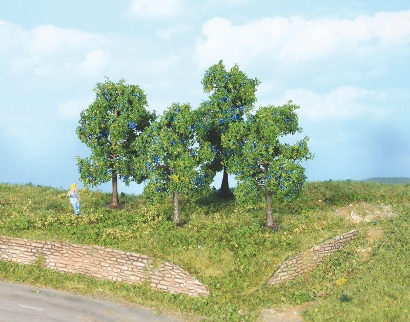 4 Zwetschgenbäume 6 + 9 cm