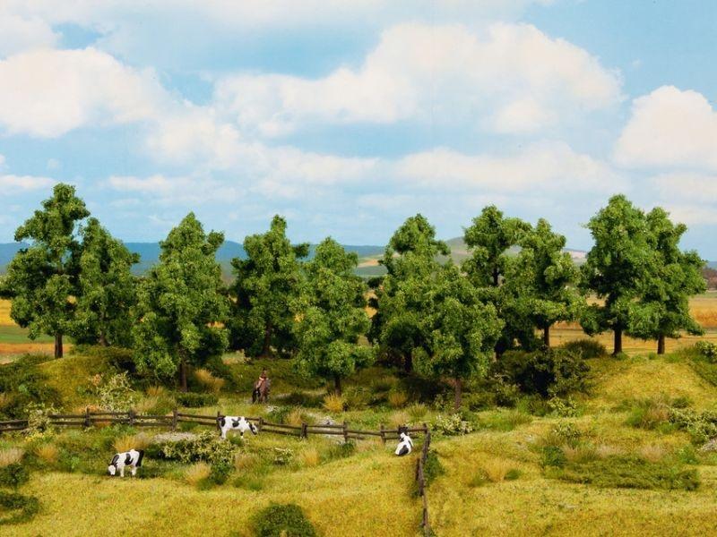Laubbäume, 4 - 10 cm hoch, 16 Stück