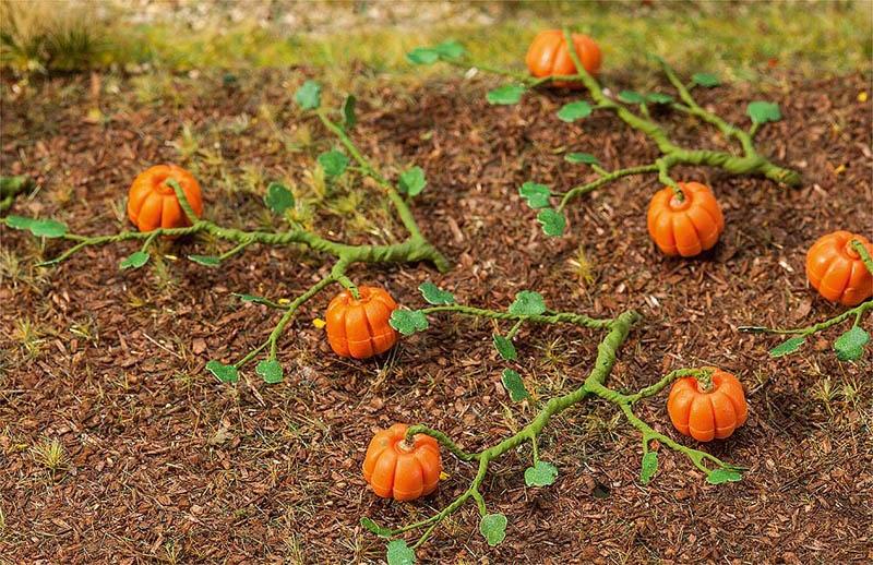 6 Kürbispflanzen H0