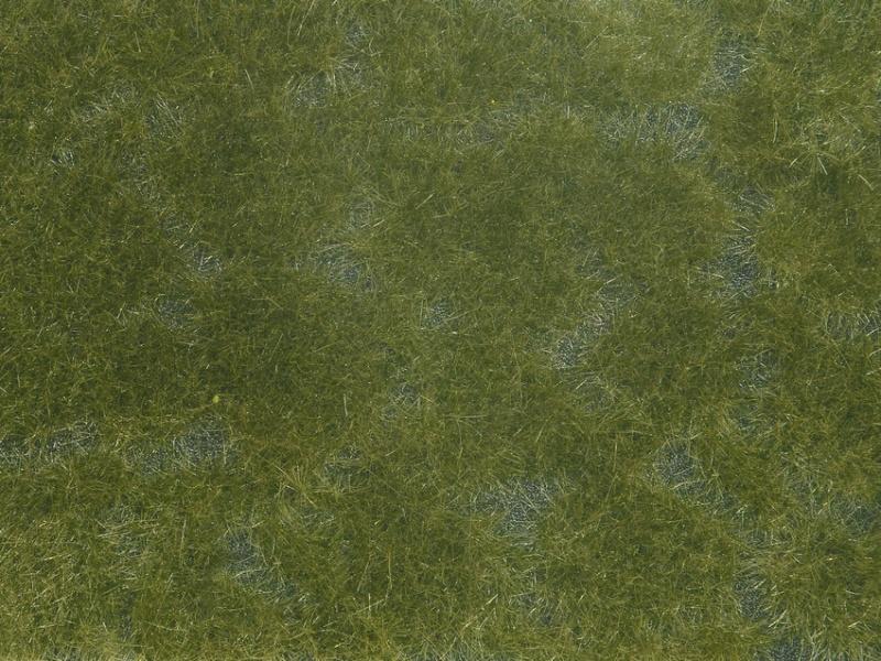 Bodendecker-Foliage dunkelgrün 12 x 18 cm