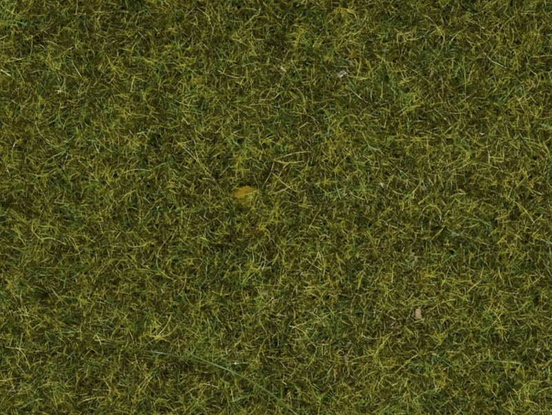 Streugras Wiese, 2,5 mm, 20 g Beutel