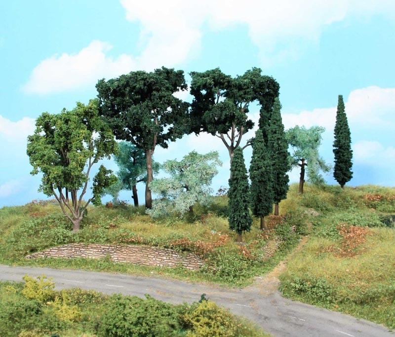 Mediterranes Baumset, 11 Bäume 8 -17 cm