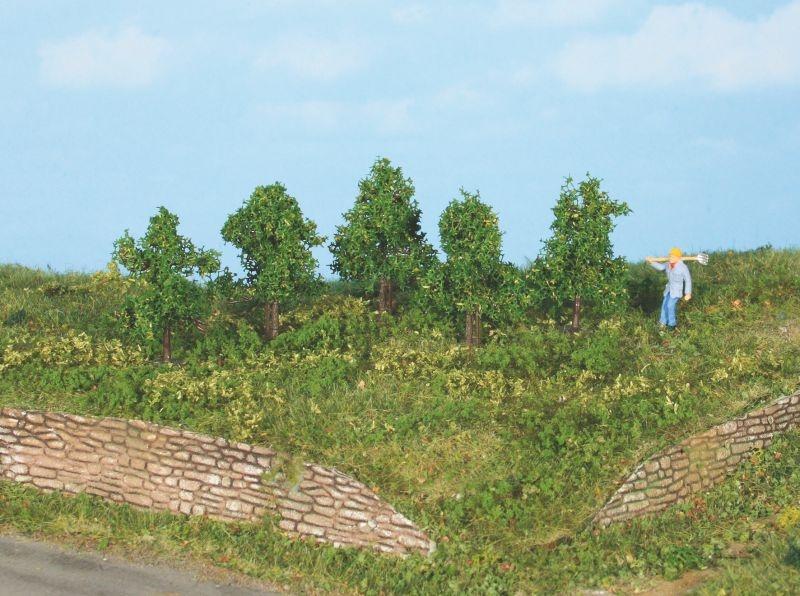 5 Laubbäume 4 cm