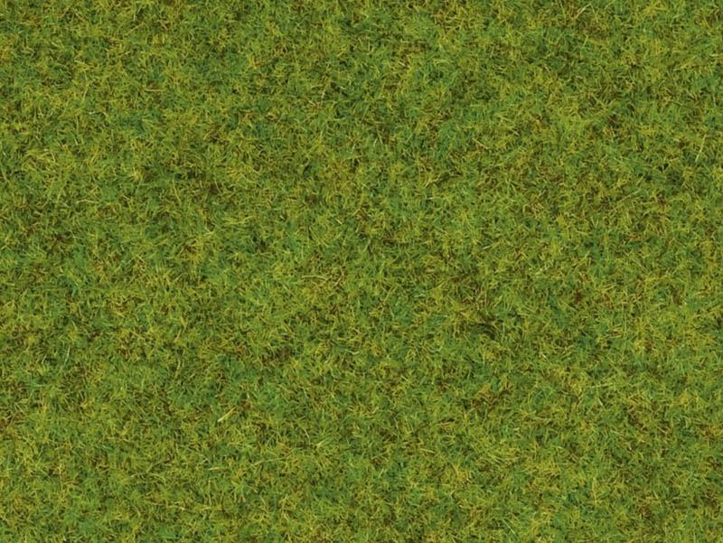 Streugras Frühlingswiese 2,5 mm, 20 g Beutel