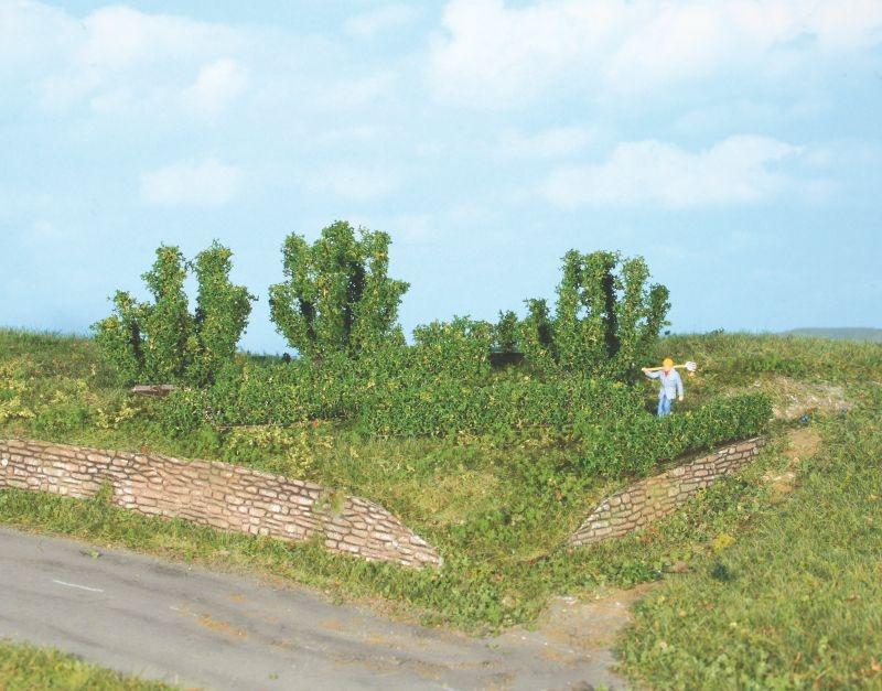 8 Büsche und Hecken 0,7 - 5 cm