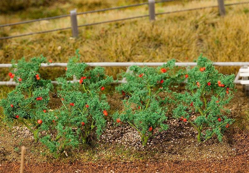 18 Tomatenpflanzen H0