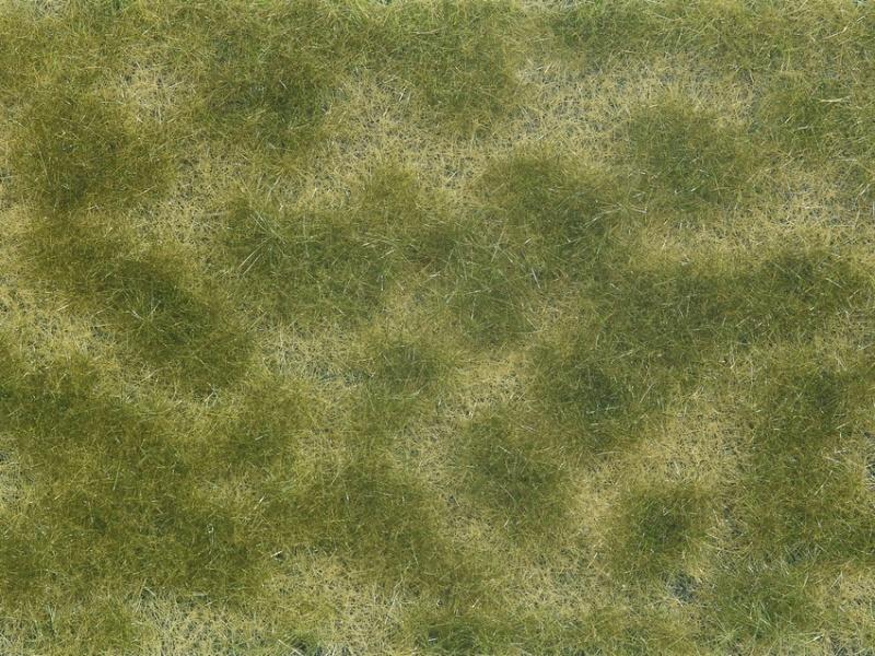 Bodendecker-Foliage grün/beige 12 x 18 cm