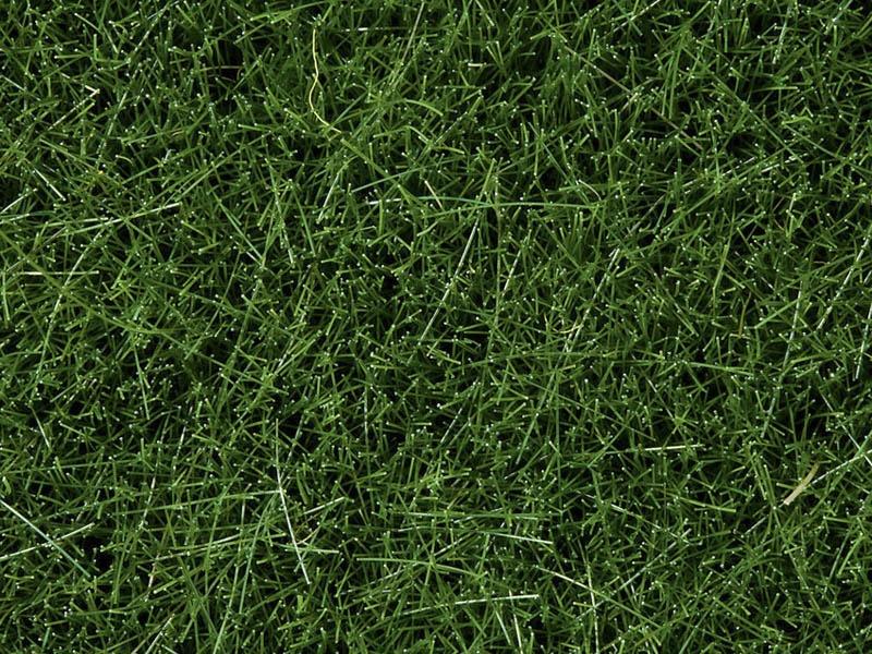 Wildgras, dunkelgrün, 6 mm, 100 g Dose
