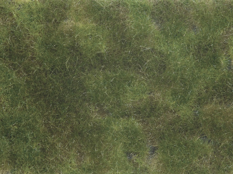 Bodendecker-Foliage olivgrün 12 x 18 cm