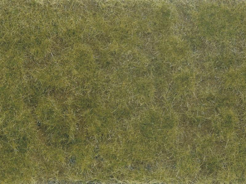 Bodendecker-Foliage grün/braun 12 x 18 cm