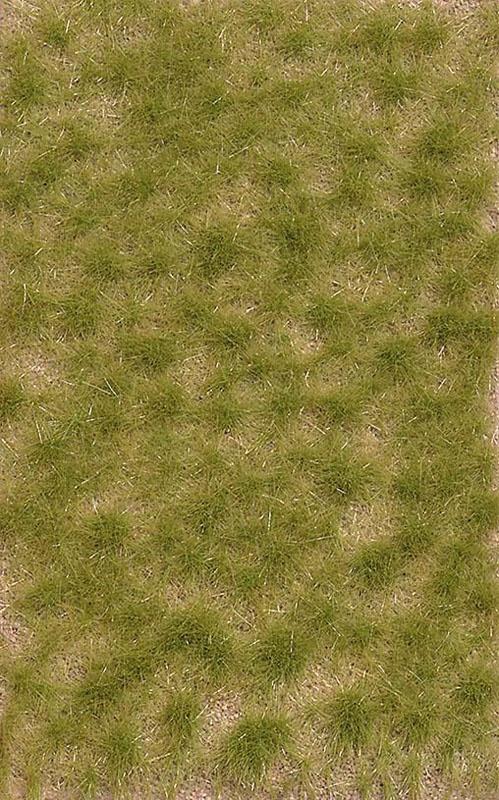 Grasbüschel, zweifarbig, kurz Spätsommer, Graslänge: 4 mm