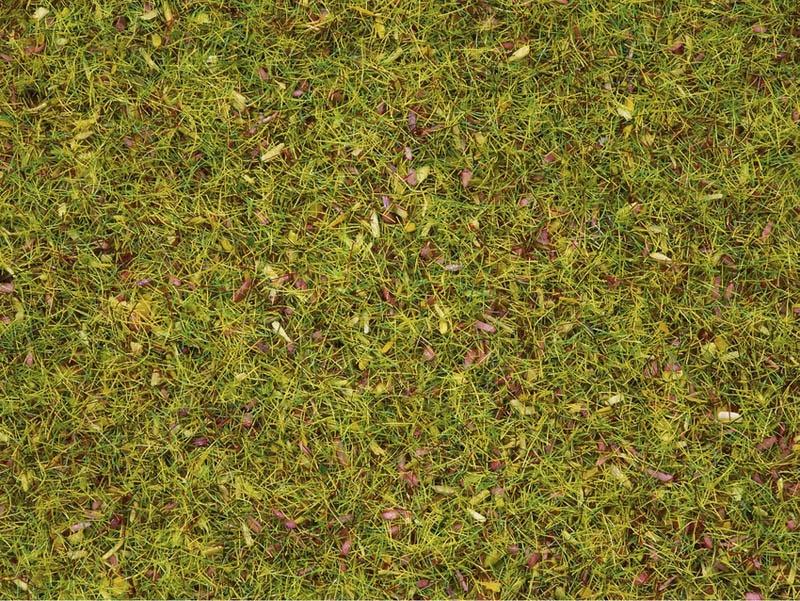 Streugras Blumenwiese, 2,5 mm, 120 g Dose