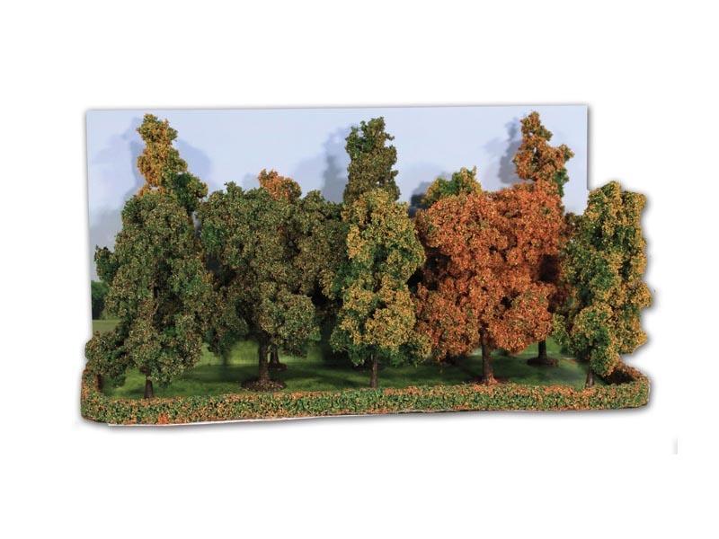 Herbstwald, 10 Bäume 10-14 cm