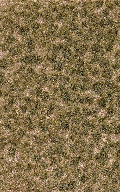 Grasbüschel kurz Herbst, Graslänge: 2 mm