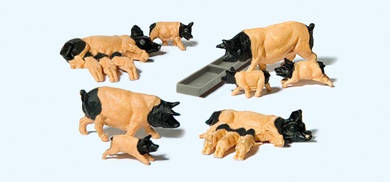Schwäbisch Hällische Schweine 1:87 / H0